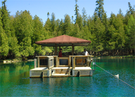 Also known as Big Springs, this unique Upper Michigan attraction is located north on M-149, 11 miles from US-2. Kitch-iti-kipi is Michigan's largest spring.