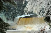 The Tahquamenon Falls are special in many ways. One little known fact is that it is the second largest waterfall east of the Mississippi, with Niagara being the largest. The Tahquamenon Falls is over 200' wide and 48' high. A beautiful walk path will direct your way through the forest within the Tahquamenon Falls State Park. Remember to visit the Lower Tahquamenon Falls which is located 4 miles downstream (north of Upper Falls) and cascades around a good size island.